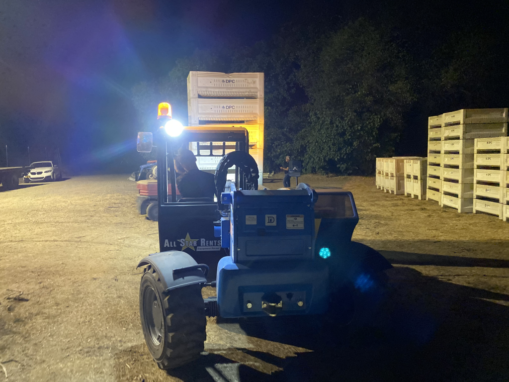 grape picking at night with the Domenico team